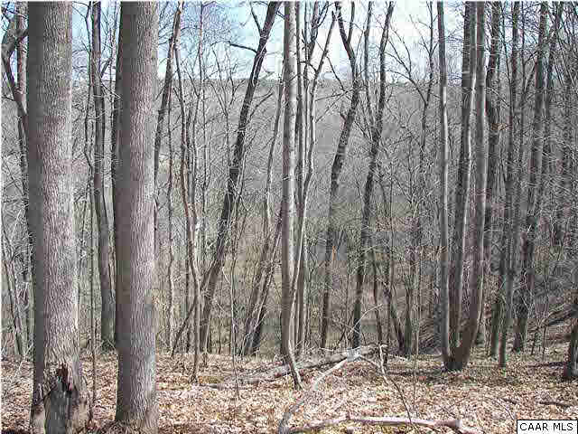 Property for sale at BROKEN ISLAND RD # LOT 12, Palmyra,  VA 22963