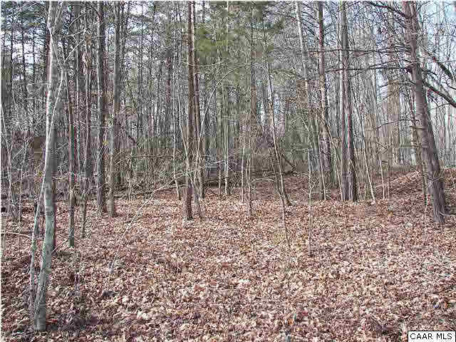 Property for sale at HAVENWOOD LN, Schuyler,  VA 22969