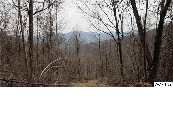 Property for sale at POUNDING BRANCH RD, Afton,  VA 22920